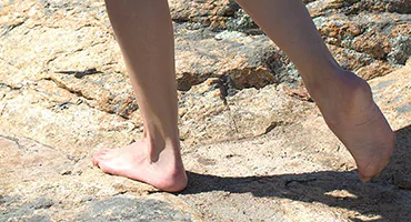 smooth and beautiful feet - L'Occitane
