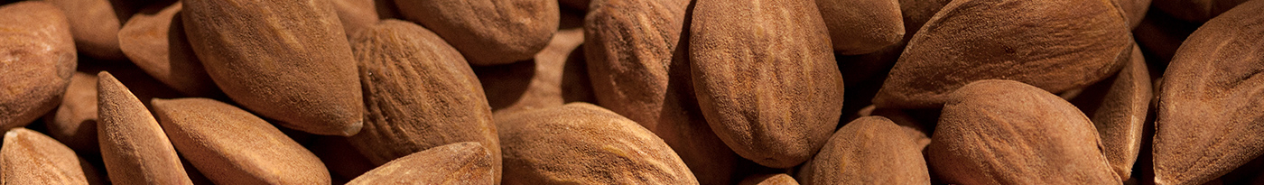 Why Should You Use Almond Body Care?