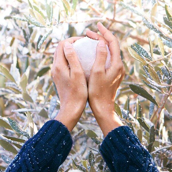 Hand holding snowball - L'Occitane