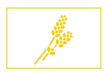 traceability icon - L'Occitane